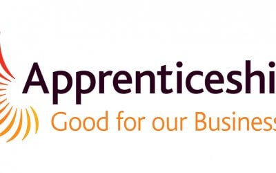 Apprenticeship Scheme Success